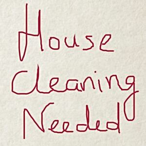 Aurora - cleaning lady needed