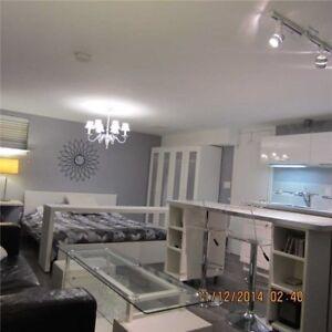Modern, Renovated Basement studio Yonge & Sheppard/ Immediate