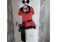 Adult minnie mouse outfit