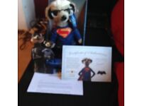 Sergei Superman Meerkat Movies Limited Edition Toy
