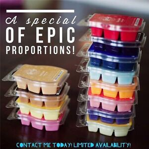 Personal Black Friday in stock Scentsy special!!! Windsor Region Ontario image 3