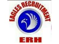 Eagles Recruitment and Healthcare Ltd provides Domiciliary care, Live-in Carers and support workers