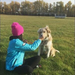 Need a pet sitter or dog walker in Athabasca?