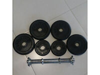 Cast Iron Dumbbell Weight Plates And Bar X2 (12.5kg)