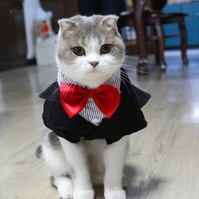 HOT Cat Pet Tuxedo Suit  Puppy Formal Party Costume Red Bow Tie Wedding Apparel