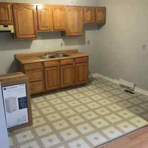Clean, downtown 1 BR apt