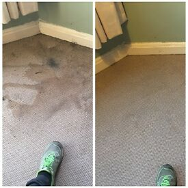 Quality carpet cleaning, you wont't be disappointed