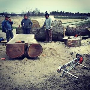 Custom Portable Sawmill Service. Great Rates, Quality Sawmilling Cambridge Kitchener Area image 4