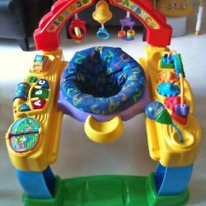 Fisher Price Intellitainer Excersaucer - Delivery Included