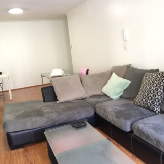 Pyrmont shareroom for female (NAGOTIATABLE ON DATE AVAIRABLE)