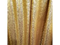 Photo backdrop frame and gold sequin backdrop