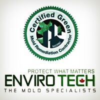 Mold Remediation/ Removal and Insulation 705 313-6321
