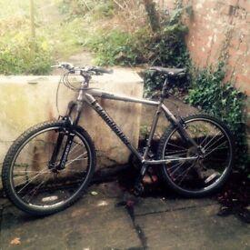 Mountain Bike - Claude Butler - £70