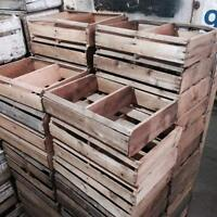 Strawberry Crates Boxes $16