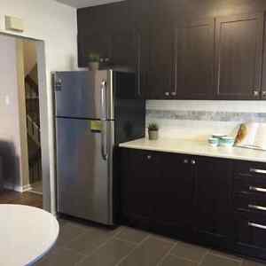 NEWLY RENOVATED TWO BDRM TOWNHOUSE IN NEPEAN W/ IN-SUITE LAUNDRY