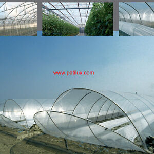 Clear 8 mil Greenhouse Poly Plastic