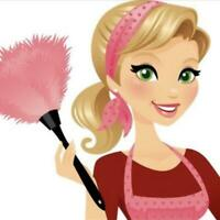 Cleaning Lady     House Cleaning Services   25/h