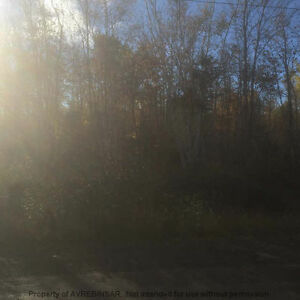5 ACRE BUILDING LOT ON BROW MOUNTAIN ROAD