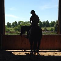 Horseback Riding Lessons and Boarding