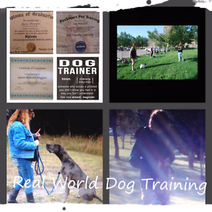 Dog obedience classes + Dog Grooming