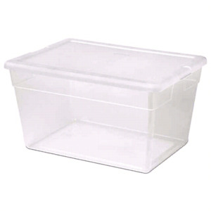 Looking for tote with lid