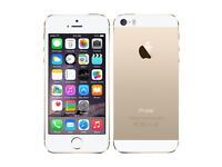 Used Apple iPhone 5S Gold Factory Unlocked 4G Smartphone - 32GB