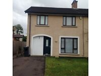 Modern Bright Cosy House to let Bangor Shaftesbury
