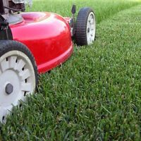 ST ALBERT LAWN SERVICE ! Call today !!