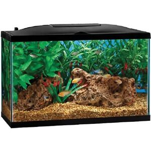 Looking for 2 10G Fish Tanks