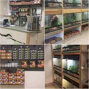 Reptiles, Arachnids, Amphibians, Feeders, and Accessories!