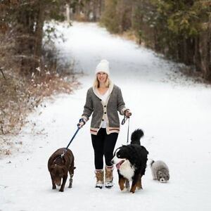 OM DOGS Dog Walking Services