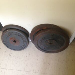 Exercise Bench and weights