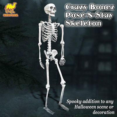 5.6'  Poseable Crazy Skull Pose-N-Stay Life Size Skeleton Halloween Decoration