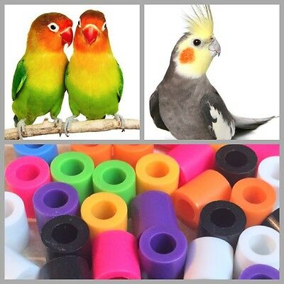 20Pcs Bird Leg Bands Cockatiel Love Bird Medium Size Birds High Quality 5mm New
