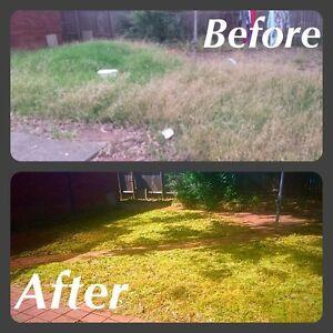 Lawn Mowing Acacia Gardens Blacktown Area Preview