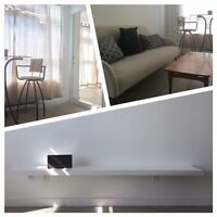 Newly renovated 1 master bedroom w/ private bathroom, fully fur