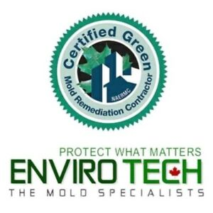 Professional Mold/ Mould Removal & Remediation 705 313 6321