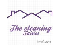 Domestic cleaning/housekeeping