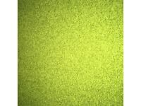 Green Rug for Sale