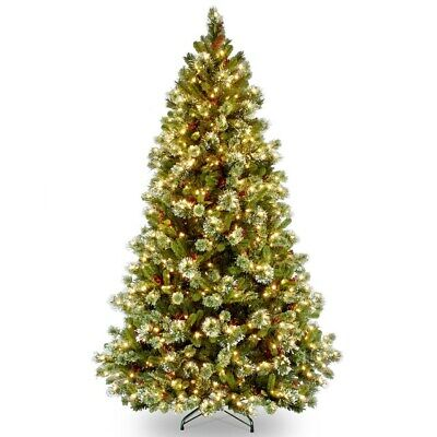 National Tree Company 6.5-ft Pre-Lit Christmas Tree WP1-308-65 Clear Light's NEW