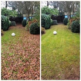 (20% discount) Garden maintenance services in Gerrards Cross, Chorleywood, Beaconsfield and areas
