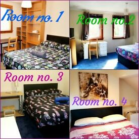 Double rooms available in 4 bedroom house - short term & holiday letting - free fast wifi & parking