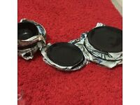 Dinner Plate Set
