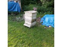 WBC Vintage Cedar Bee Hive