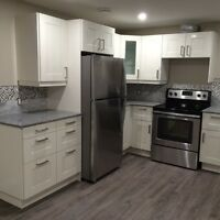 Gorgeous fully renovated 2 bdrm legal bsmt suite near Northgate