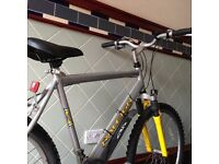 Men's mountain Bike Raleigh in Silver