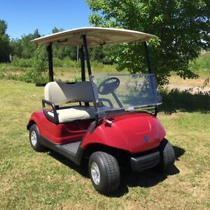 NEW 2016 GAS YAMAHA GOLF CARTS FOR SALE