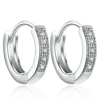 Earrings Hoop Huggie Stainless Steel Men Women S 2pcs Ear Stud Hinged Dangle (Hinged Dangle)