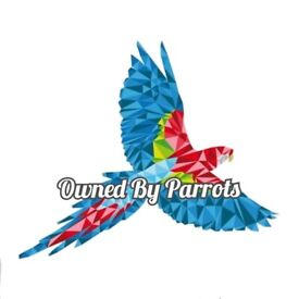 Parrot Behavioural Support
