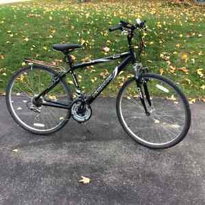 Men's Hybrid Bicycle